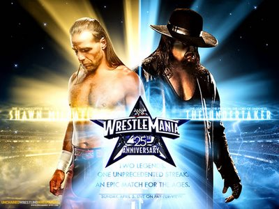 the-undertaker-vs-shawn-michaels-wrestle