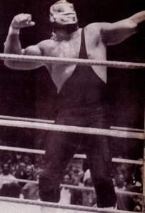 Hulk Hogan Hulk Machine