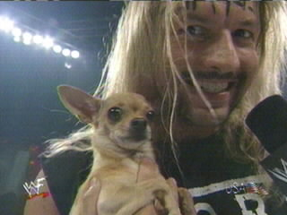 Al Snow Big Bossman Dog Kennel