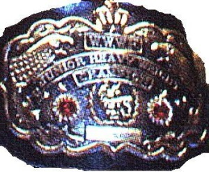 WWF Junior heavyweight title