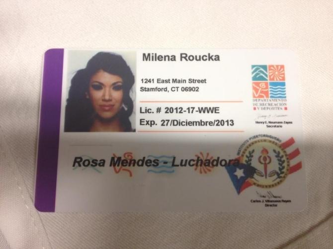 rosa-mendes-pr-license